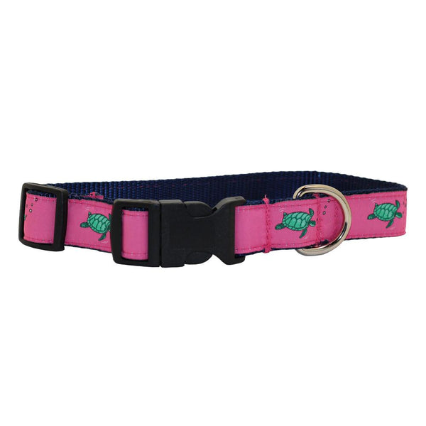 Panama Pink Sea Turtle Dog Collar