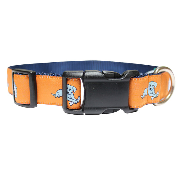 Citrus Orange In the Dog House Dog Collar