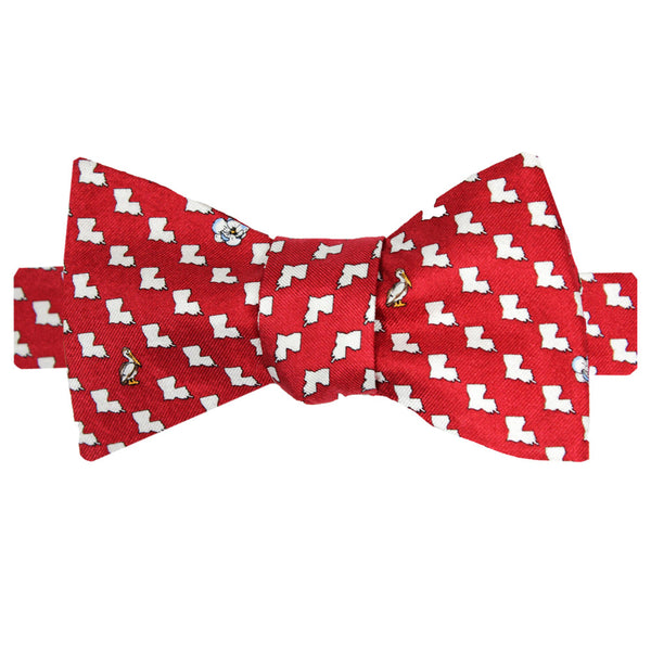 Boys' Louisiana Bow Tie