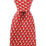 Cayenne Red Boys' Pelican Tie