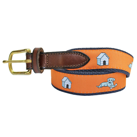 Citrus Orange Boys' In the Dog House Club Belt