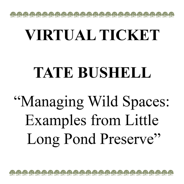 Tate Bushell program