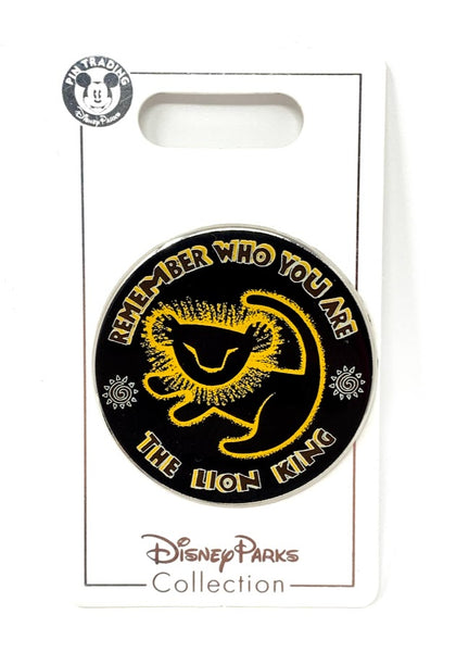 Simba Drawing Remember Who You Are The Lion King Disney Pin