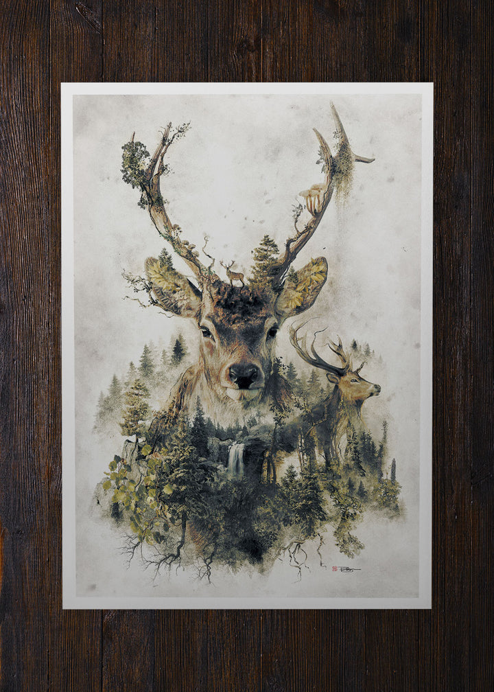 The Deer - Archival Prints
