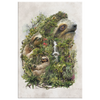 Sloth Wrap Canvas