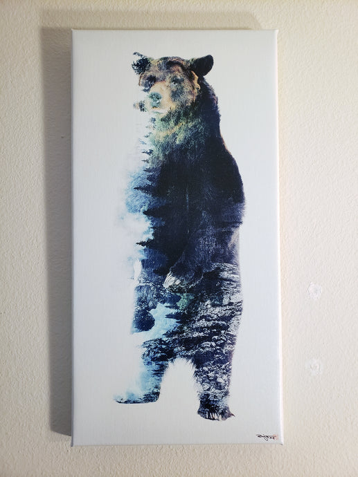 Misty Bear Stretched Canvas 10