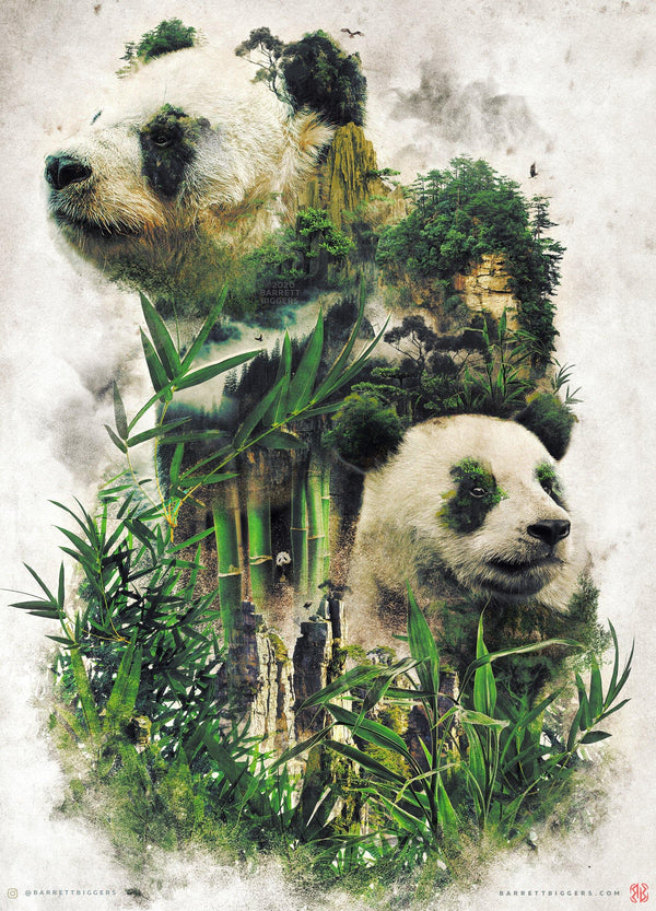 The Giant Panda of China  - Archival Prints and Canvas Options