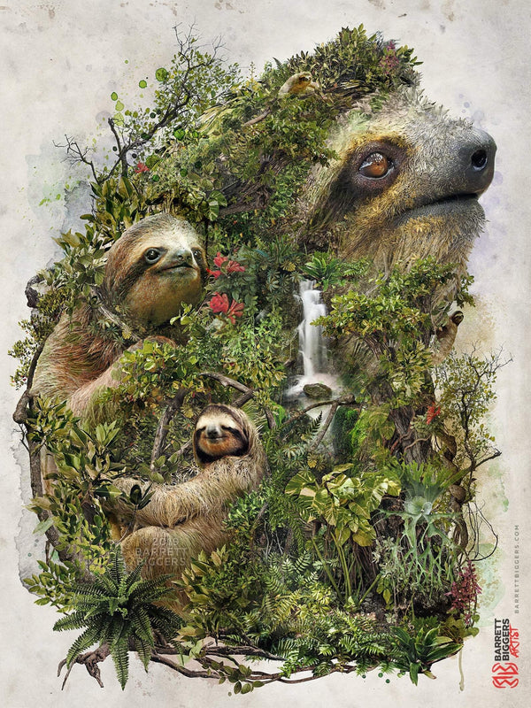The Sloth of the Jungle - Archival Prints and Canvas Options