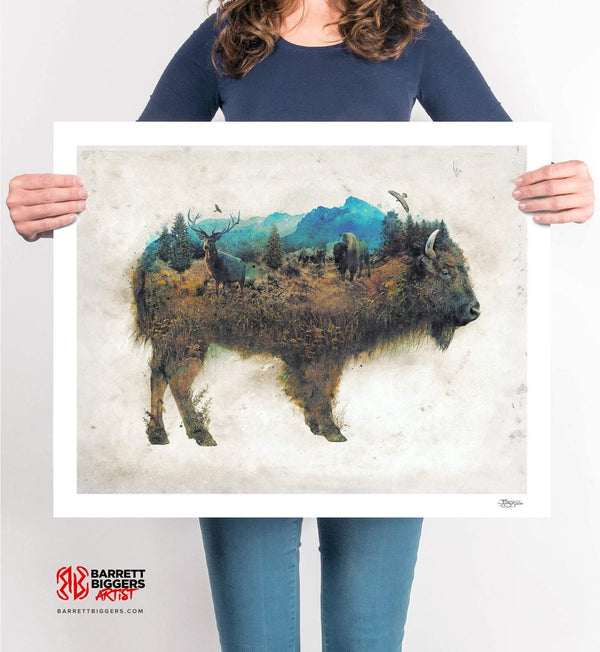 The Buffalo Bison - Archival Prints and Canvas
