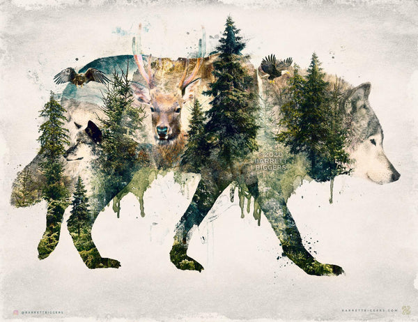 Walking with Wolves - Archival Prints and Canvas Options