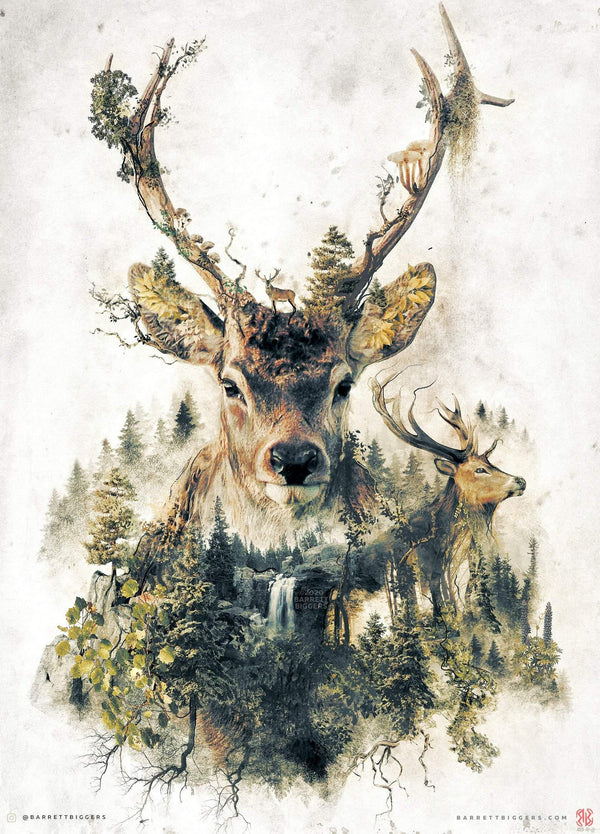 The Deer - Archival Prints and Canvas Options