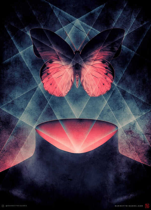 Butterfly Beautiful Symmetry - Archival Prints and Canvas - Barrett Biggers Artist