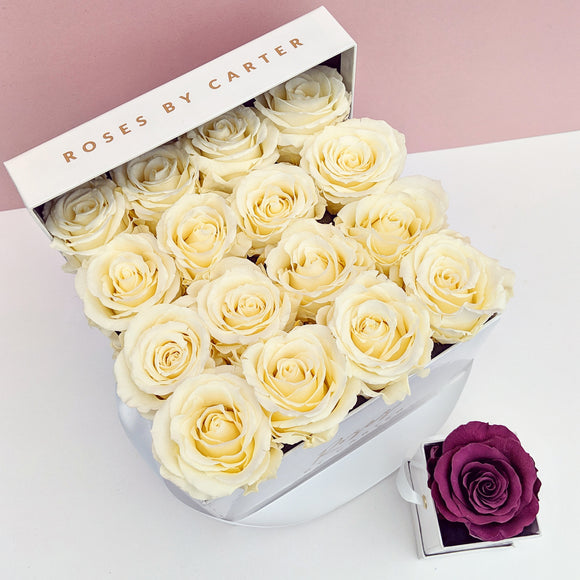 White Signature Collection - Champagne Roses
