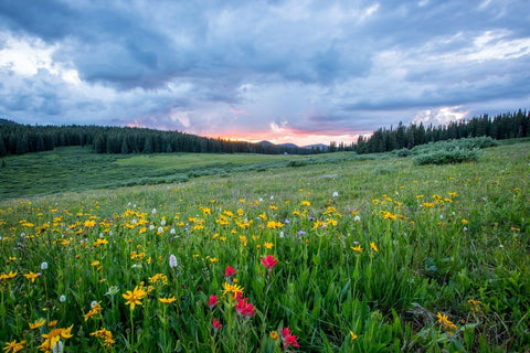 Reasons You Should Plan a Backpacking Trip This Spring