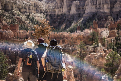 4 Things to Look for When Choosing a Backpack