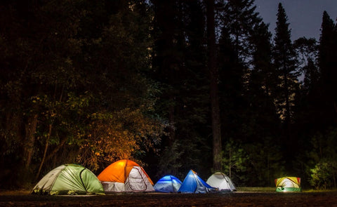 Camping tents in the forest at night