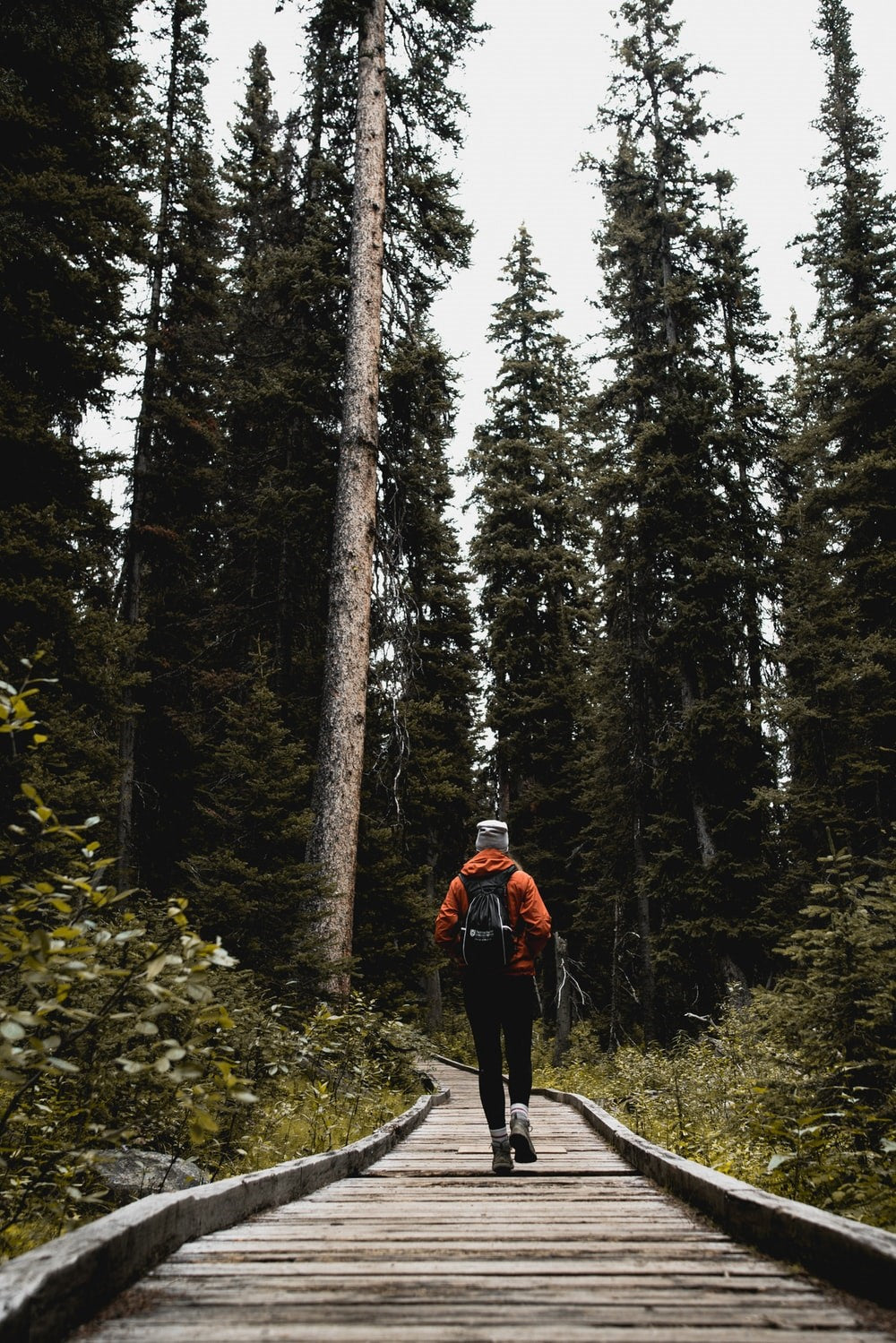 3 Powerful Mental and Emotional Health Benefits of Hiking
