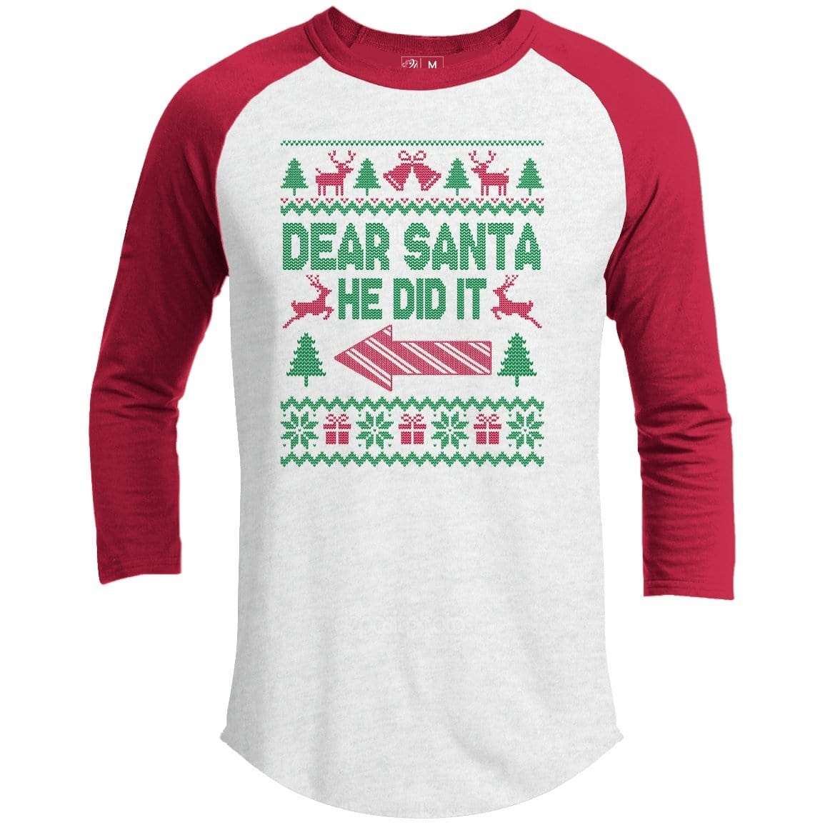 Dear Santa He Did It Premium Group Christmas Raglan