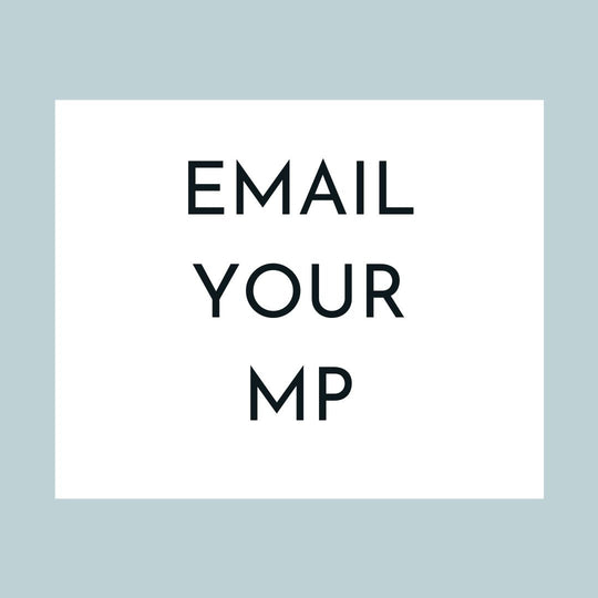 2.	EMAIL YOUR MP (1 min)