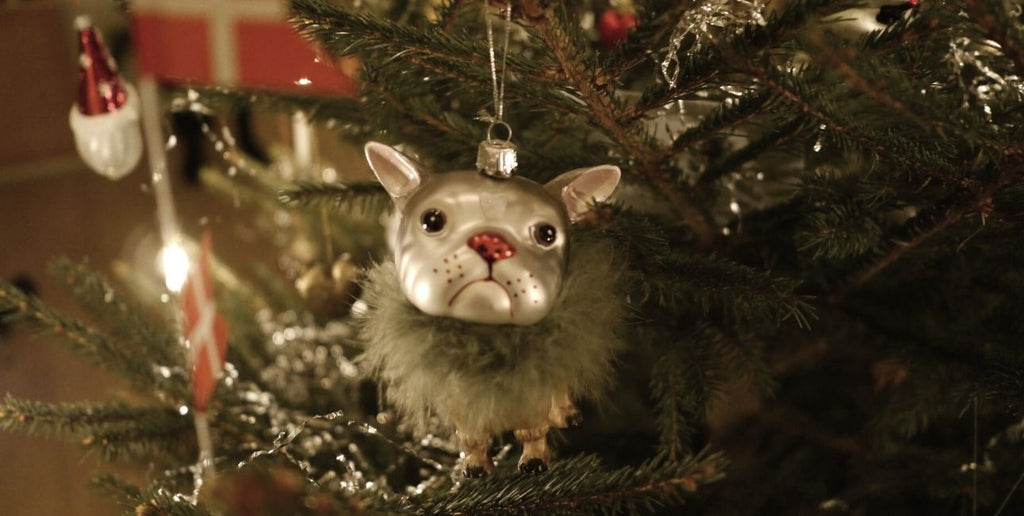 how to enjoy a sustainable Christmas - VILDNIS