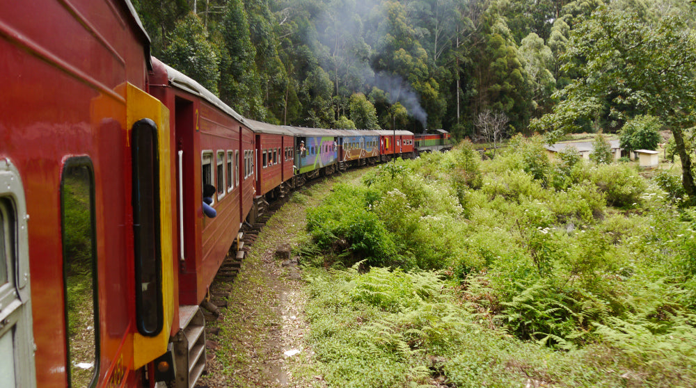 VILDNIS Sustainable holiday - public transport in Sri Lanka