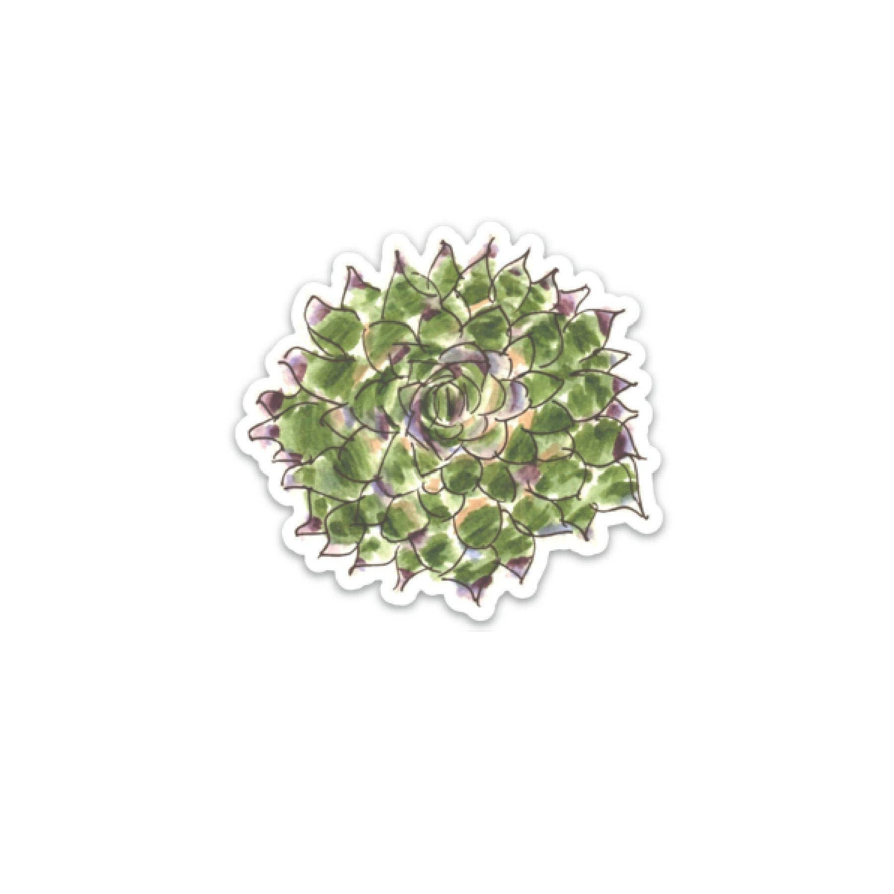 Succulent Plant Decal