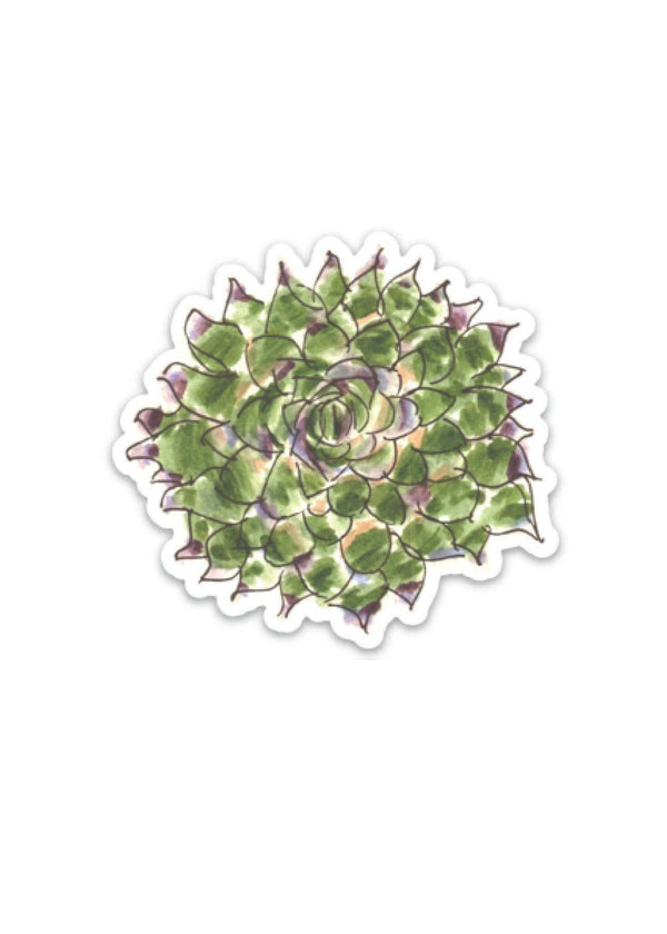 Inherit Co.  | Paper + Planning | Succulent Plant Decal