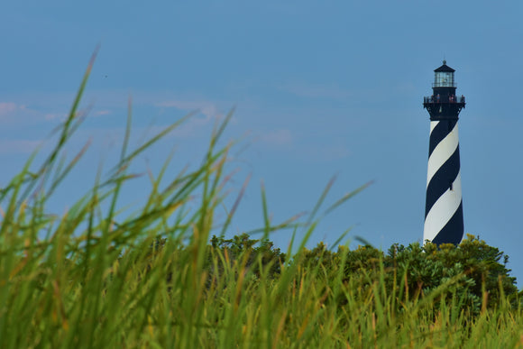 Cape Hatteras Lighthouse through the Marsh