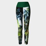 Tree Yoga Leggings
