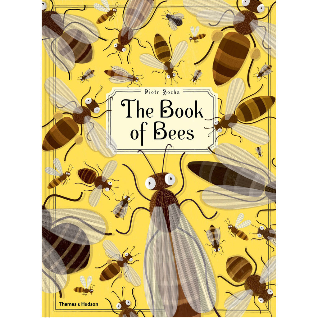 Book of Bees Front Cover BOOK50950