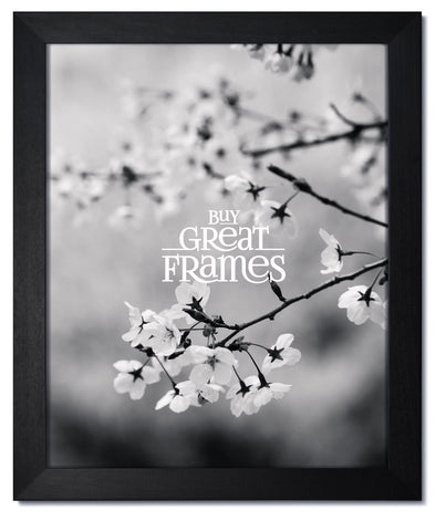 Madeline Black Wood Picture Frame with Clear Glass