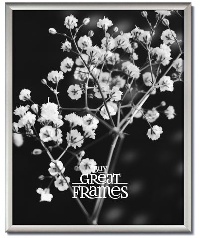 Frosted Silver Metal Picture Frames and Clear Glass
