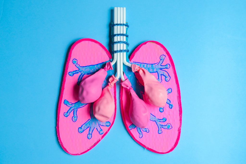Learn How Your Lungs Work
