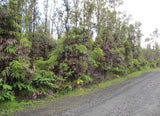 #L06008-1 Own a piece of your own Rain Forest with 3 Acres of Paradise in Fern Forrest Hawaii $35,899.00 ($346.94 /Month)