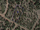 #L09855-1 1.17 Acres in California Pines, Modoc CA $6,299.00 ($104.31/Month)