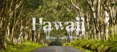#L06008-1 Own a piece of your own Rain Forest with 3 Acres of Paradise in Fern Forrest Hawaii $35,899.00 ($343.19/Month)
