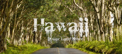 #L03707-1 Cozy Wooded Lot in Nanawale Estates, Hawaii $15,900.00 ($232.92/Month)