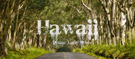 #L06433-1 3 Miles from the Pacific Ocean, Puna St., Pahoa, HI, $15,399.00 ($221.82/Month)
