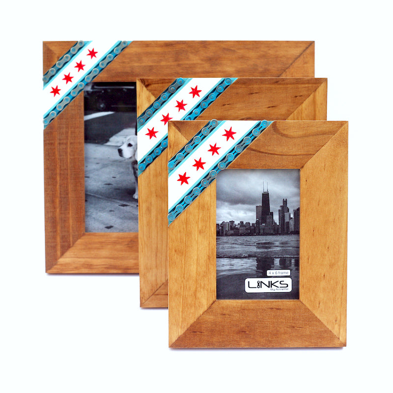 Chicago Pride Cycling Picture Frame – LINKS by Annette