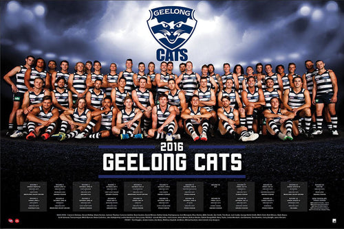 Geelong 2016 Team Poster