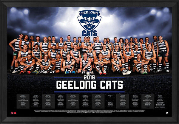 Geelong 2016 Team Poster Framed