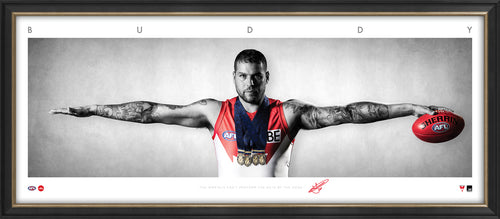 BUDDY FRANKLIN MINI WINGS