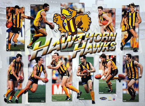 Hawthorn Hawks Best Of Hero Team Poster