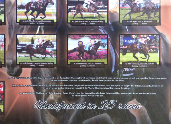 Black Caviar Framed Poster - Undefeated