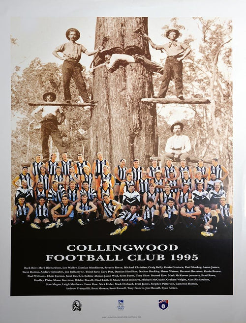 Collingwood 1995 Team Poster