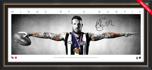 COLLINGWOOD-DANE SWAN MINI WINGS FRAMED