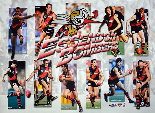 Essendon 1998 Best Of Poster