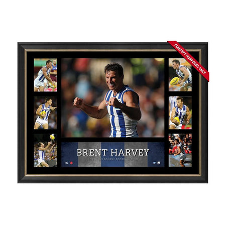WEST COAST EAGLES 2018 AFL PREMIERS TEAM SIGNED 'FLYING HIGH'