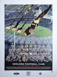 Geelong 1996 Team Poster