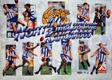 North Melbourne 1998 Best Of Poster